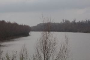 Brazos River from the hiking trail